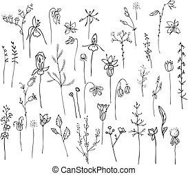 Sammlung mit stilisierten Waldblumen und Kräutern isoliert auf weiß.