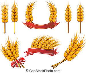 Sammlung von Mustern. Weizen