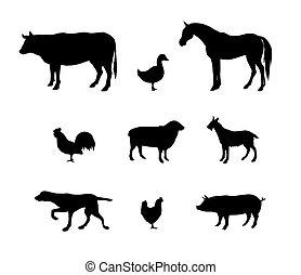 satz, schwarz, tiere, silhouette, inländisch, vektor