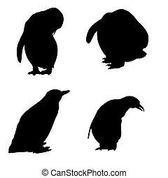 satz, silhouette, pinguin