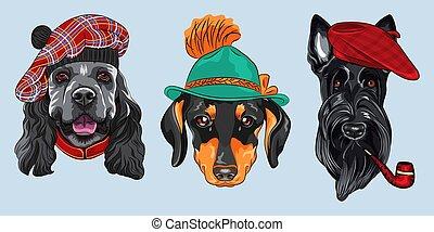 satz, vektor, karikatur, hunden, hüfthose, 2