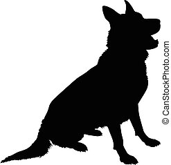schäferhund, silhouette