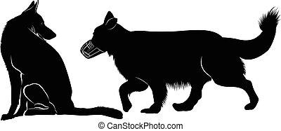 schäferhund, silhouette, shepherd.
