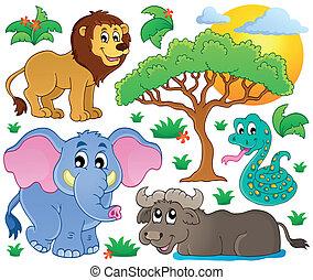 Schöne afrikanische Tiere Sammlung 2.