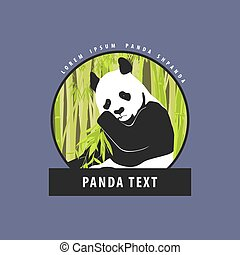 schöne , logo, hell, panda