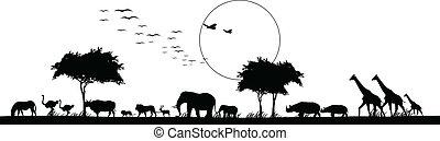 Schöne Silhouette von Safaritier