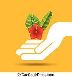 schöne , tropische blume, hand, lassen, halten, lilie, rotes