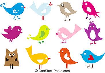 Schöne Vögel
