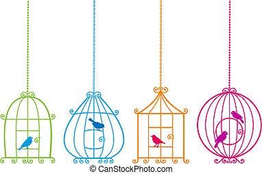 Schöne Vögelchen mit süßen Vögeln, V