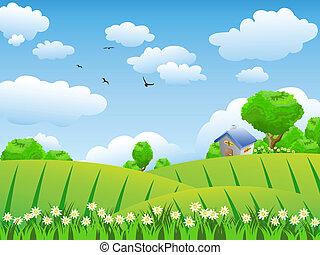 Schönes Feld