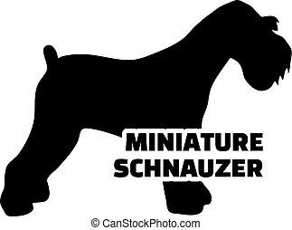 schnauzer, miniatur, silhouette, wort, echte