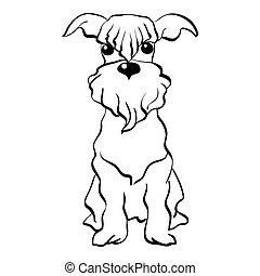 schnauzer, skizze, sitzen, hund, miniatur, vektor