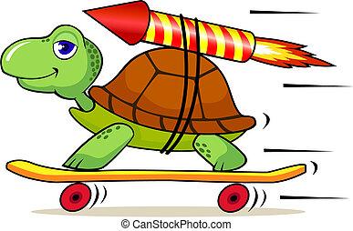 Schnelle Schildkröte