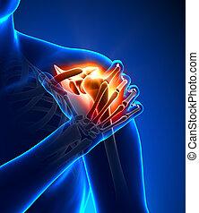 Schulterschmerzen - verletztes Trauma