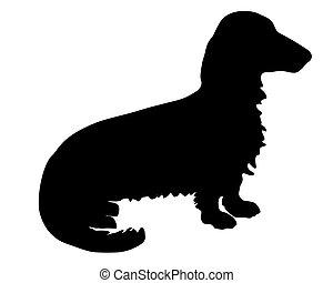 schwarz, dachs, silhouette, hund, longhaired