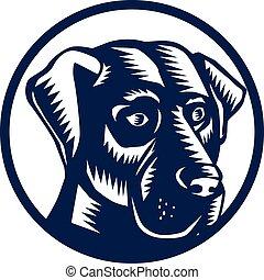 Schwarz-Labrador-Kopf-Kreis.
