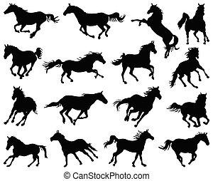 schwarz, pferden, silhouetten