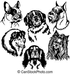 Schwarz und weiß mit Hunden.