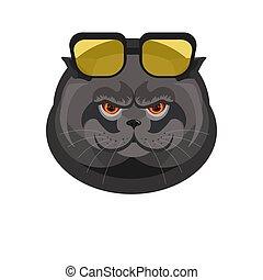 Schwarze Katze mit Sonnenbrille, isoliert auf weiß