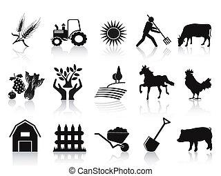 Schwarze Landwirtschaft und landwirtschaftliche Ikonen