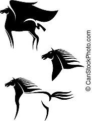 Schwarze Pferde sprühen