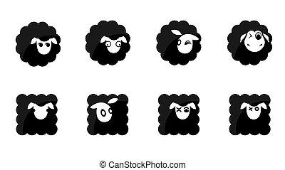 Schwarze Schaf-Ikonen