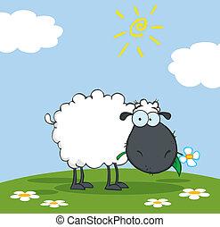 Schwarze Schaf-Karikaturfigur