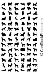 Schwarze Silhouette verschiedener Hunderassen. Eine Vektor-Illustration