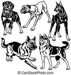 Schwarzes weißes Set mit Hunden.
