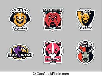 sechs tiere, graue , bündel, hintergrund, letterings, iconsand, embleme