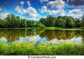See in einem Sommerwald