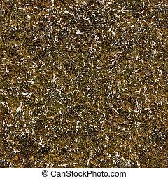 Seemloses Wintergras Textur.