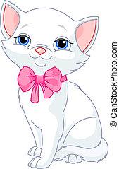 Sehr süße weiße Katze