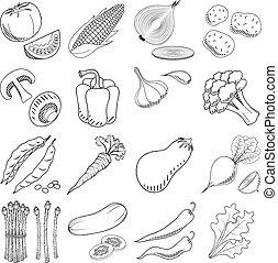 (set), gemuese, -, schwarz, illustration/, weißes, zeichnung