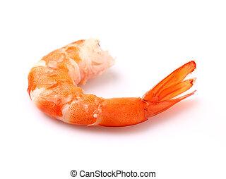 Shrimps in Nahaufnahme