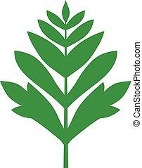silhouette, blatt, grün, federartig
