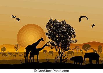 Silhouette der Safari-Tiere