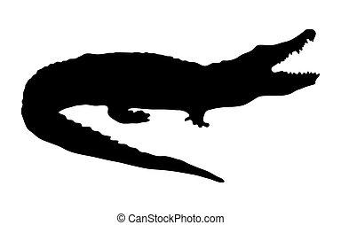 Silhouette eines Krokodils auf weißem Hintergrund.