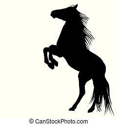 Silhouette eines Pferdes.