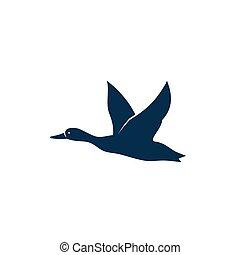 silhouette, freigestellt, fliegendes, ente, wilder vogel, schwarz