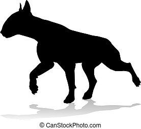 silhouette, haustier, hund, tier