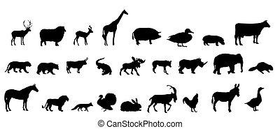 silhouette, satz, vektor, tiere