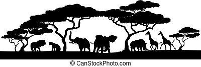 silhouette, tier, szene, safari, afrikanisch, landschaftsbild