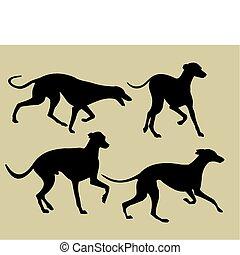 Silhouette von Windhunden