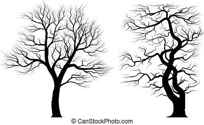 Silhouetten alter Bäume über weißem Hintergrund.