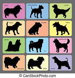 silhouetten, hund, 2