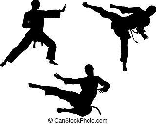 silhouetten, karate, kunst, kriegerisch