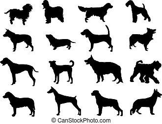 silhouetten, mehr, hunden