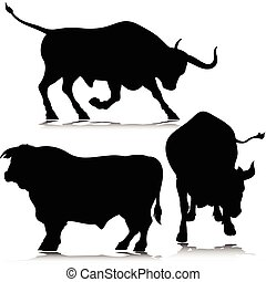 silhouetten, vektor, drei, stier