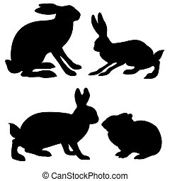 Silhouettes hare und Kaninchen im weißen Hintergrund